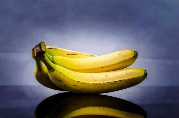 dürfen hunde bananen fressen?