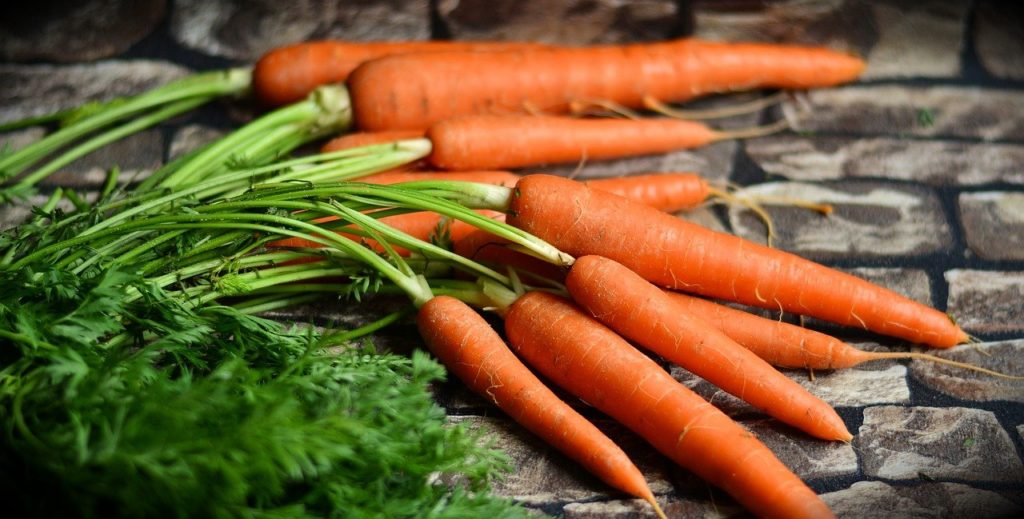 Dürfen Hunde Karotten essen?