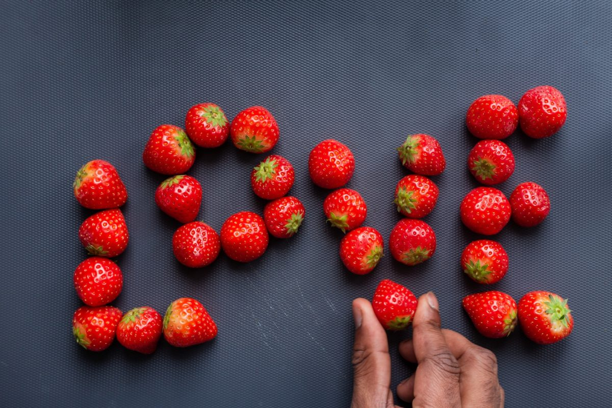 Erdbeeren gesund für Hund