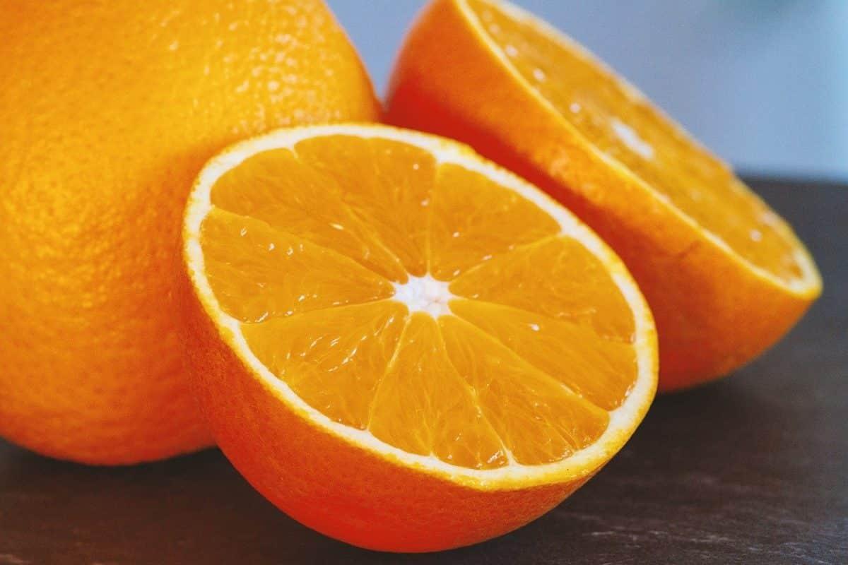 orangen für hunde gesund?