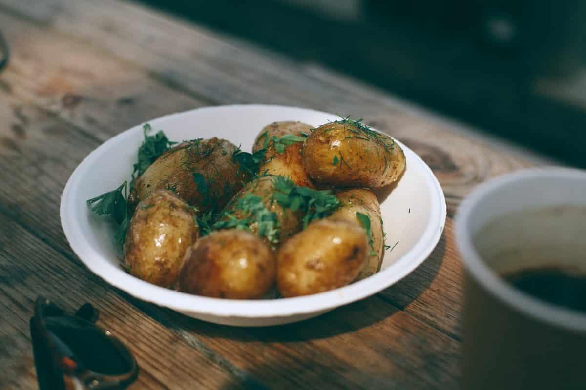 kartoffeln für hunde gesund