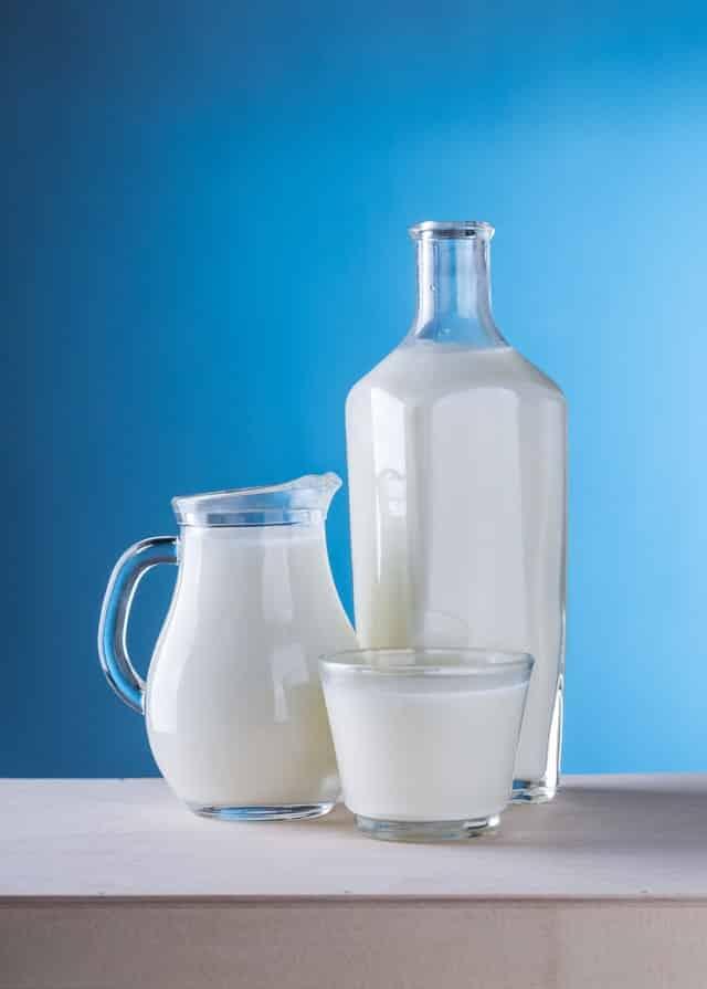 Dürfen Hunde Milch trinken?