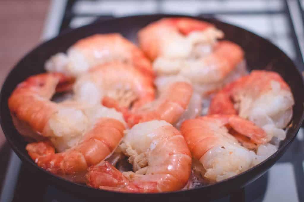 Dürfen Hunde Shrimps essen?