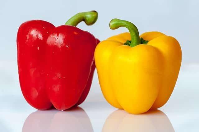 Paprika gesund für Hunde